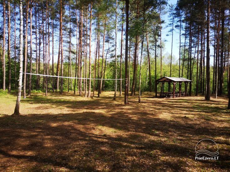 Stovyklavietės nuoma prie Baltosios Ančios upės kranto - 3
