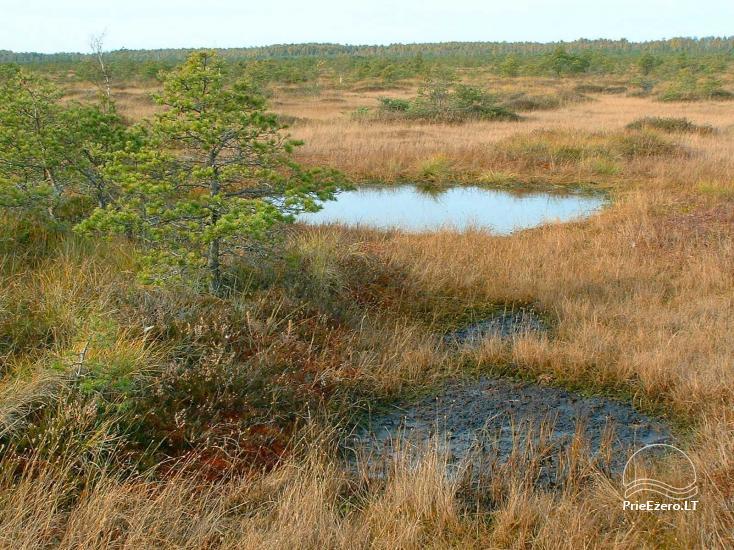Žuvinto biosferos rezervatas - 2