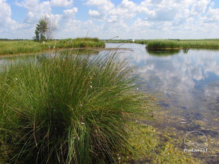 Žuvinto biosferos rezervatas - 10