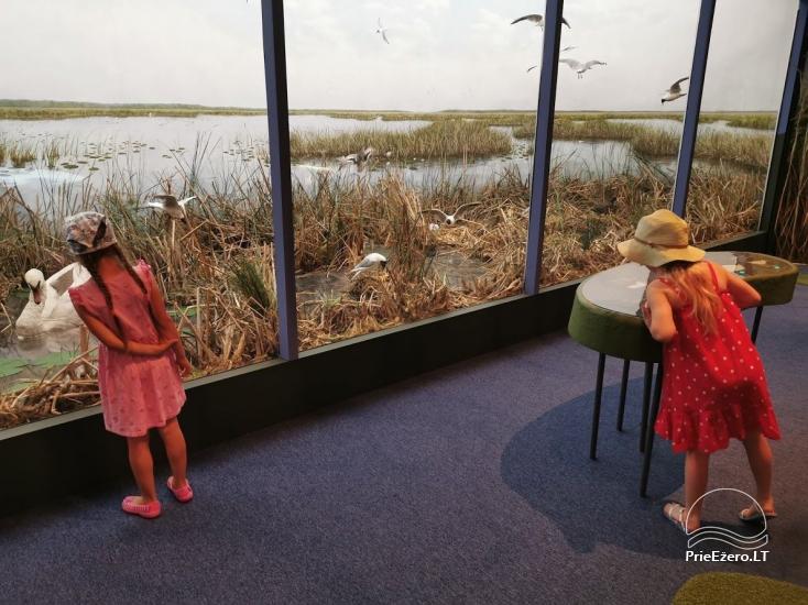 Žuvinto ežero gamtos takas ir apžvalgos aikštelė. Lankytojų centras - 6