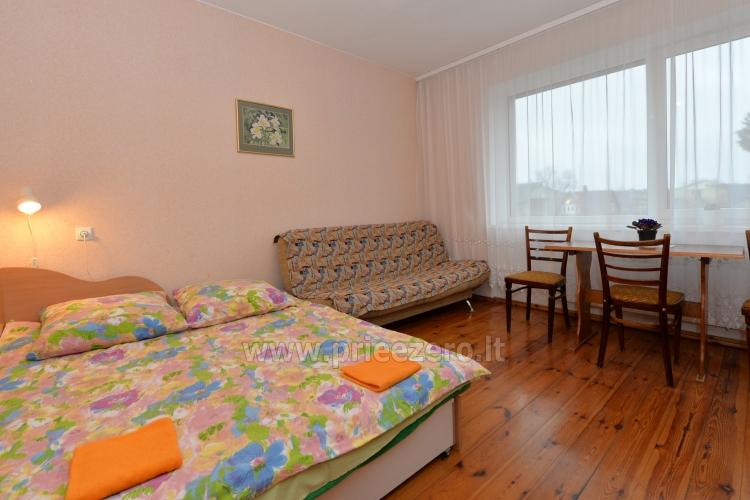 Poilsis Druskininkuose, privačiuose apartamentuose - 11