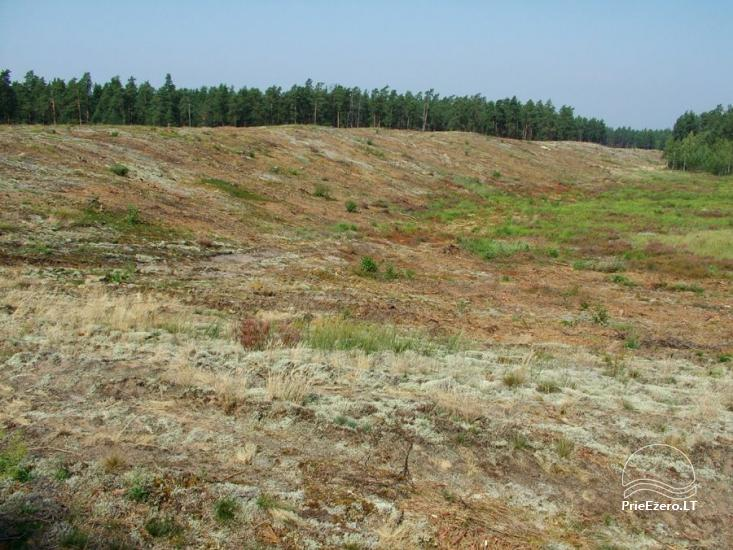 Čepkelių raistas – valstybinis gamtinis rezervatas - 3