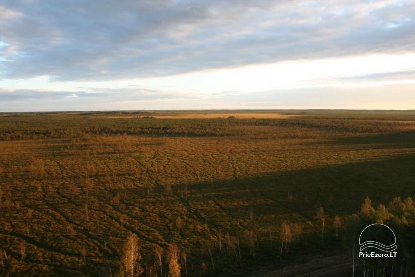 Čepkelių raistas – valstybinis gamtinis rezervatas - 6