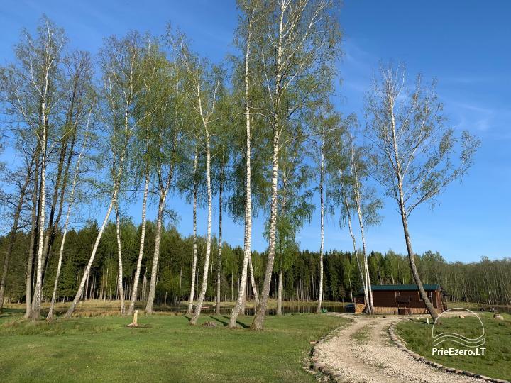 Auksinio elnio slėnis - Pirties namelis, kubilas, kempingas - 12