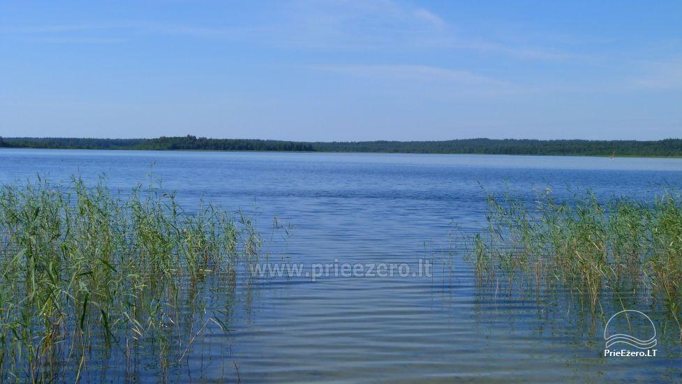 Baidarės, žvejyba - aktyvus poilsis sodyboje Stirnelės viensėdis - 27