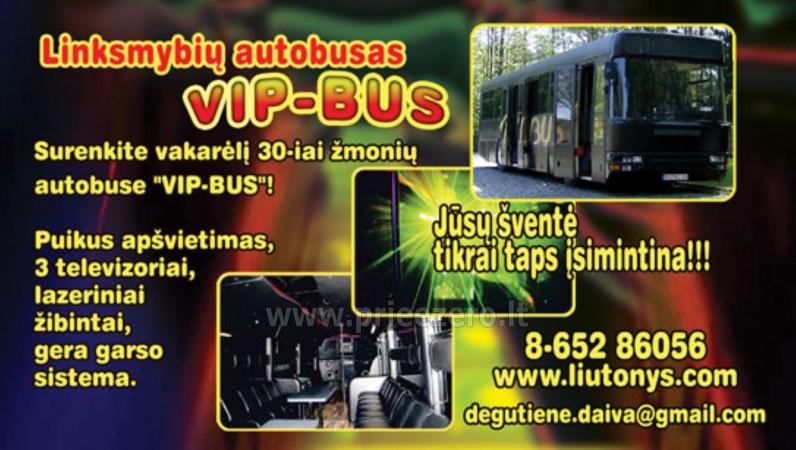 Autobuso VIP bus nuoma šventėms - 11