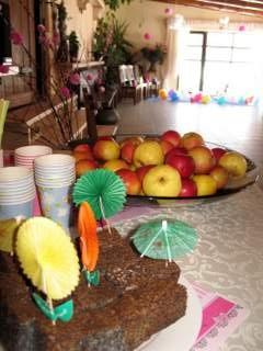 Vaikų gimtadieniai Įlankos sodybos kavinėje - 6