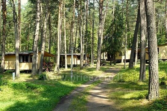 Visus metus veikianti poilsio bazė prie Bebrusų ežero Molėtų rajone RŪTA - 10
