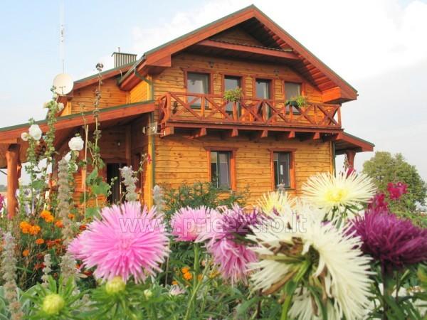 Jaukūs ir romantiški nameliai VALENTINAMS - 2