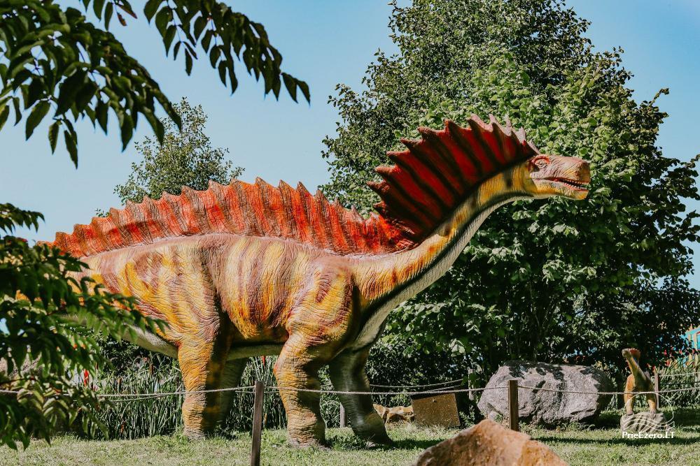 Dino parkas Radailių dvare 7 km nuo Klaipėdos - 13