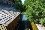 Ginučių vandens malūnas už 100 metrų nuo sodybos - 3