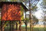Inkiliukas – Dvivietis namelis medžiuose - 1
