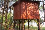 Inkiliukas – Dvivietis namelis medžiuose - 2
