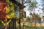 Inkiliukas – Dvivietis namelis medžiuose - 3