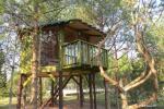 Inkiliukas – Dvivietis namelis medžiuose - 4