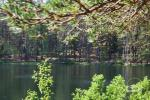 Pažink Labanorą! - pėsčiųjų žygis po Labanoro regioninį parką - 6