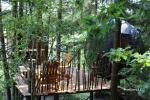 Palapinė medyje - 1