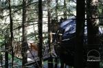 Palapinė medyje - 5